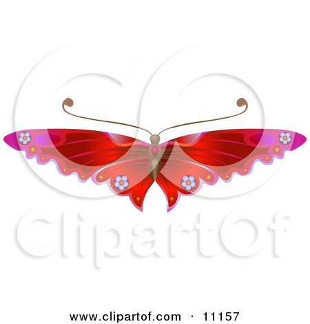 Gorgeous Red Butterfly With Flower Decoration on the Wings Posters, Art Prints