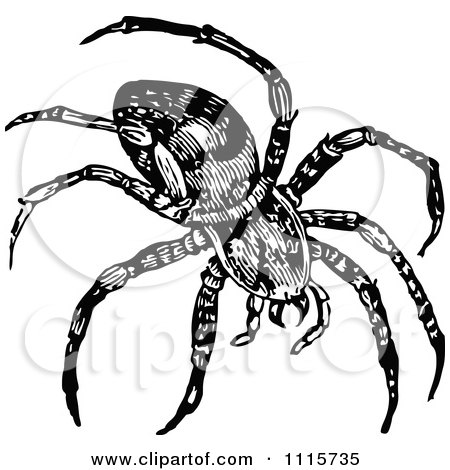 Clipart Retro Vintage Black And White Spider - Royalty Free Vector Illustration by Prawny Vintage