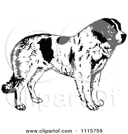 Clipart Retro Vintage Black And White St Bernard Dog In Profile - Royalty Free Vector Illustration by Prawny Vintage