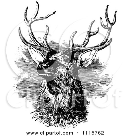 Clipart Retro Vintage Black And White Stag Buck Deer With Antlers 3 - Royalty Free Vector Illustration by Prawny Vintage