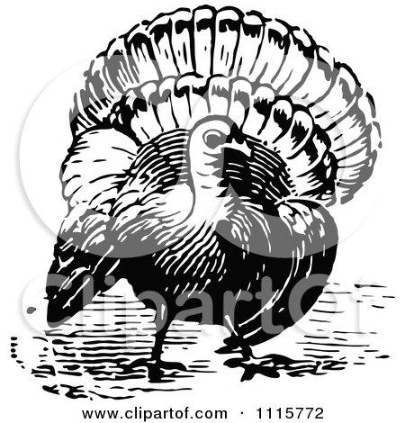 Clipart Retro Vintage Black And White Turkey Bird - Royalty Free Vector Illustration by Prawny Vintage
