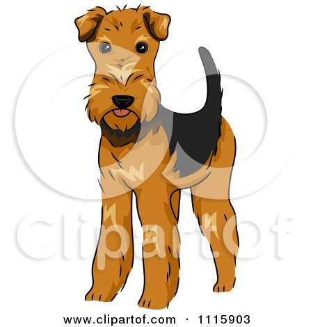 Clipart Cute Airedale Terrier Dog - Royalty Free Vector Illustration by BNP Design Studio