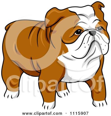 Clipart Cute English Bulldog - Royalty Free Vector Illustration by BNP Design Studio