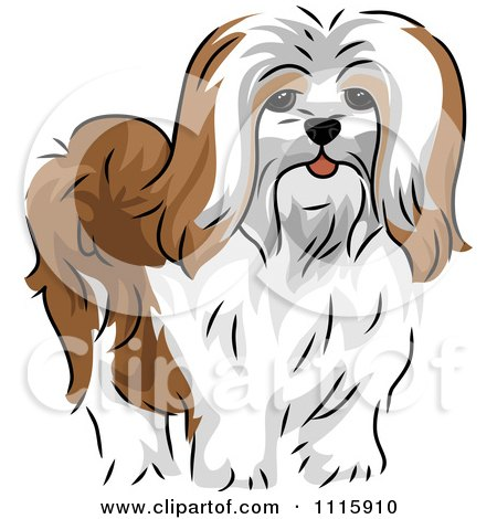 Clipart Cute Lhasa Apso Dog - Royalty Free Vector Illustration by BNP Design Studio