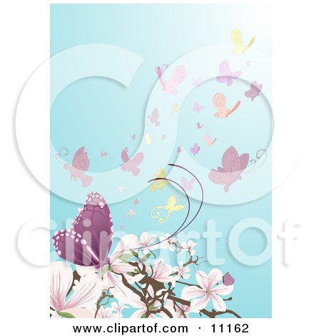 a Swarm of Butterflies Near Pink and White Magnolia Blossoms Clipart Illustration by AtStockIllustration