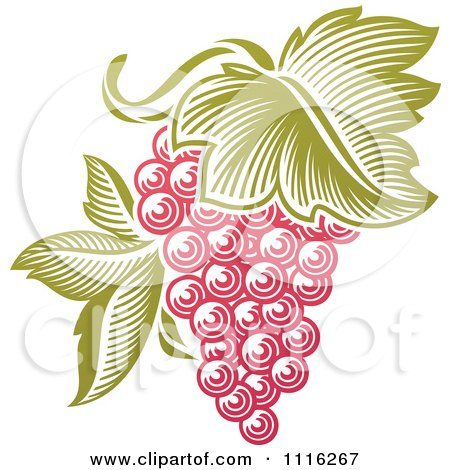 Clipart Purple Grapes And Leaves Wine Icon 1 - Royalty Free Vector Illustration by elena
