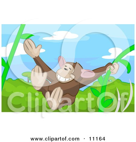 Cute Monkey Swinging on Vines in a Rainforest Posters, Art Prints