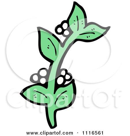 Clipart Sprig Of Christmas Mistletoe 2 - Royalty Free Vector Illustration by lineartestpilot
