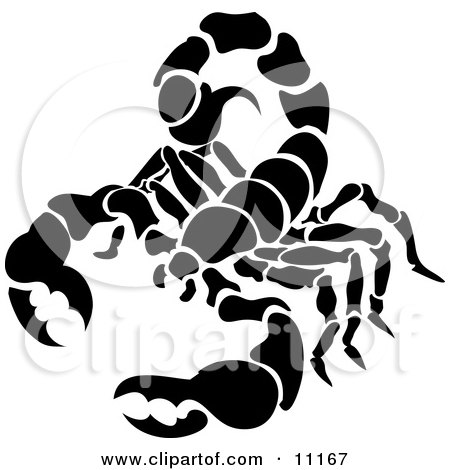 Scorpion, Scorpius of the Zodiac Clipart Illustration by AtStockIllustration
