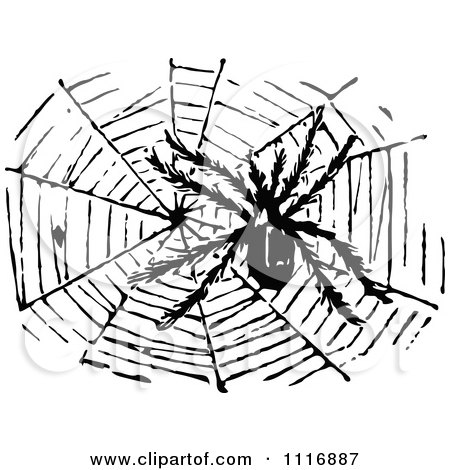 Clipart Of A Retro Vintage Black And White Hairy Spider And Web - Royalty Free Vector Illustration by Prawny Vintage