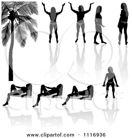Vector Clipart Of Black And Gray Bikini Women Silhouettes And Reflections - Royalty Free Graphic Illustration by dero