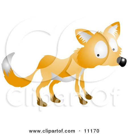 Nervous Or Shy Fox Looking Back Over His Shoulder Clipart Illustration