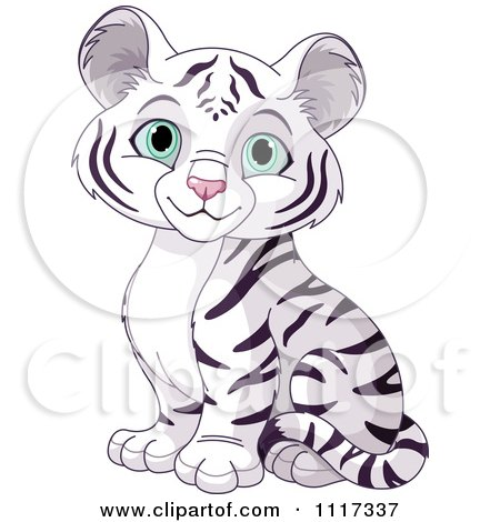 Cartoon Of A Cute White Tiger Cub Sitting - Royalty Free Vector Clipart by Pushkin