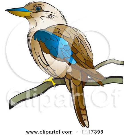 Clipart Of A Perched Kookaburra Bird - Royalty Free Vector Illustration by Lal Perera