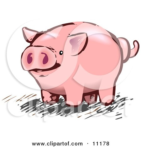 Pink Pig With a Curly Tail Posters, Art Prints