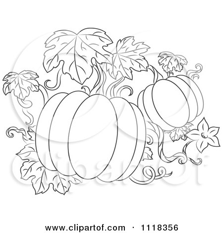 Clipart Of A Black And White Pumpkin Vine - Royalty Free Vector Illustration by Vector Tradition SM