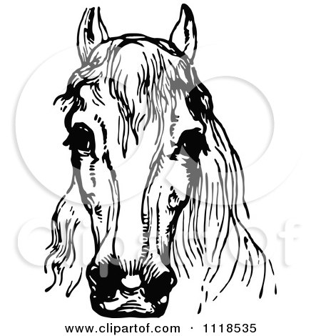 Clipart Of A Retro Vintage Black And White Horse Head 1 - Royalty Free Vector Illustration by Prawny Vintage