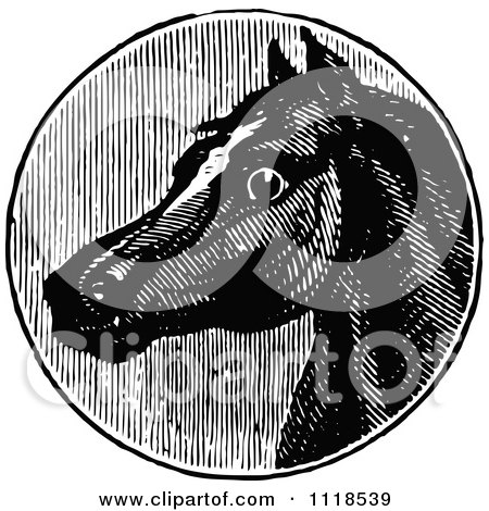 Clipart Of A Retro Vintage Black And White Horse Head 2 - Royalty Free Vector Illustration by Prawny Vintage