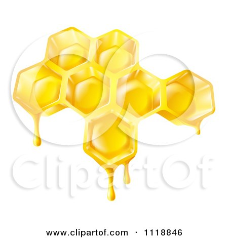 Clipart Of Bee Honey Dripping Off Of Combs - Royalty Free Vector Illustration by AtStockIllustration