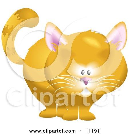 Cute Orange Cat Clipart Illustration by AtStockIllustration