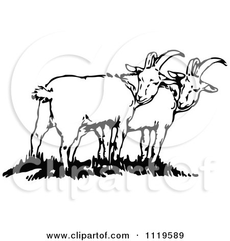 Clipart Of Retro Vintage Black And White Goats - Royalty Free Vector Illustration by Prawny Vintage