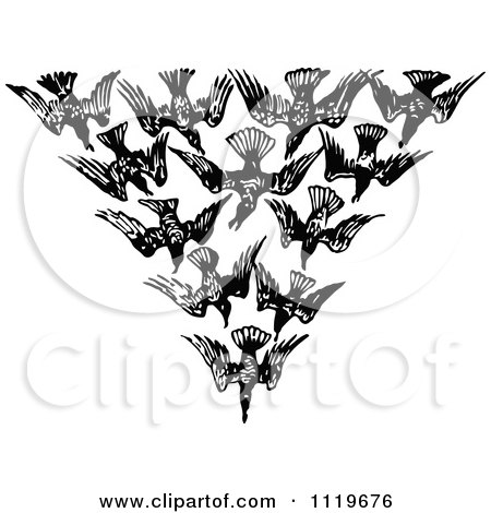 Clipart Of A Retro Vintage Black And White Flock Of Birds In A V - Royalty Free Vector Illustration by Prawny Vintage