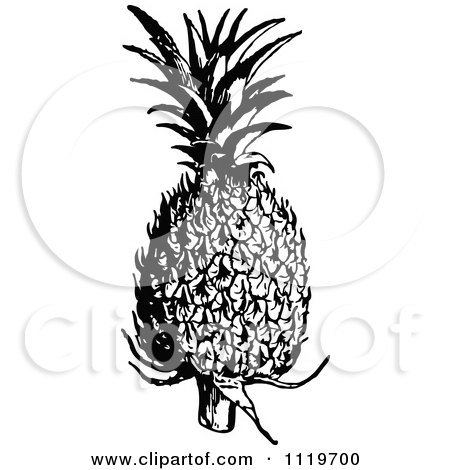 Clipart Of A Retro Vintage Black And White Pineapple - Royalty Free Vector Illustration by Prawny Vintage