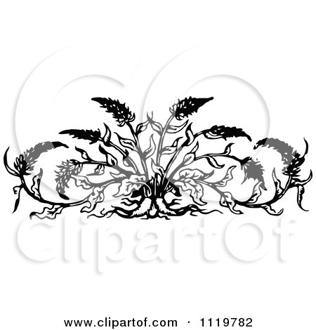Clipart Of A Retro Vintage Black And White Wild Flower Flourish - Royalty Free Vector Illustration by Prawny Vintage