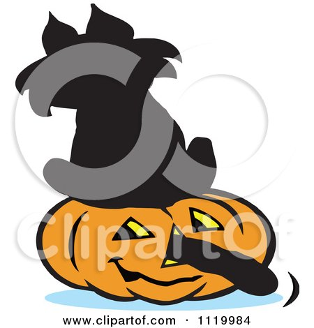 Cartoon Of A Black Cat Sitting On A Halloween Jackolantern With Its Tail Going Through The Nose - Royalty Free Vector Clipart by Johnny Sajem