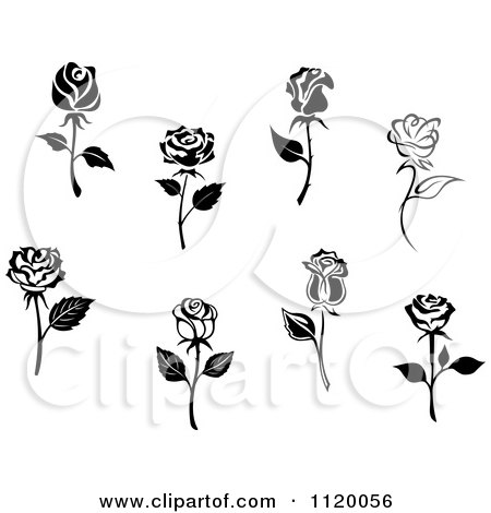 Clipart Of Black And White Rose Flowers - Royalty Free Vector Illustration by Vector Tradition SM