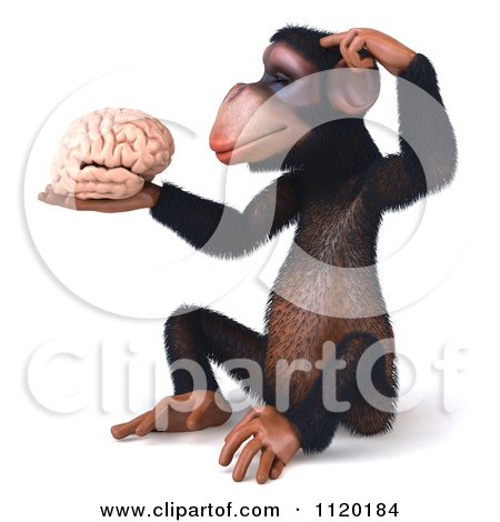 Clipart Of A 3d Thinking Chimp Holding A Brain 1 - Royalty Free CGI Illustration by Julos