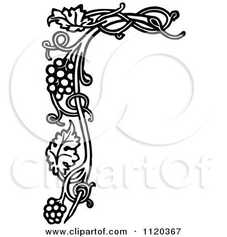 Royalty-Free (RF) Grape Vine Clipart, Illustrations ...