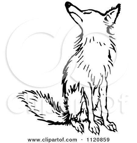 Clipart Of A Retro Vintage Black And White Fox Sitting - Royalty Free Vector Illustration by Prawny Vintage