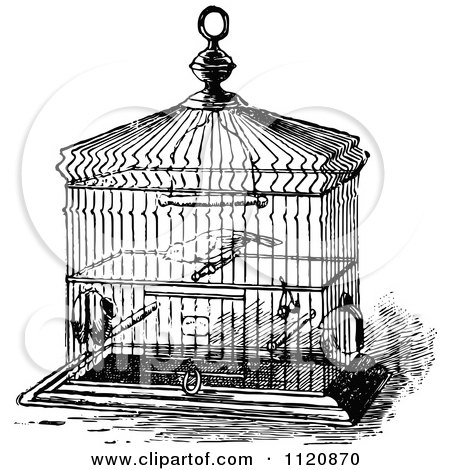 Clipart Vintage Black And White Antique Bird Cage On A