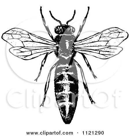 Clipart Of A Vintage Black And White Flying Bee