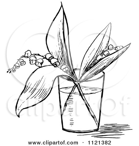 Clipart Of A Retro Vintage Black And White Lily Of The Valley Stems In A Cup Of Water - Royalty Free Vector Illustration by Prawny Vintage
