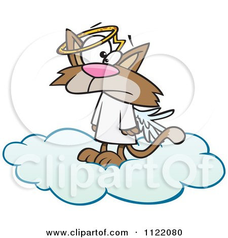 Cartoon Of A Confused Angel Cat In Heaven - Royalty Free Vector Clipart by toonaday