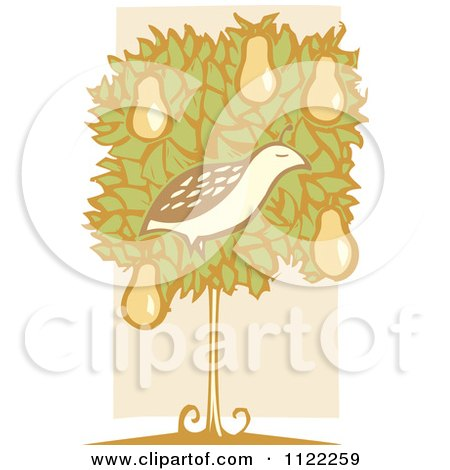 Clipart Of A Woodcut Partridge Bird In A Pear Tree Over Beige - Royalty Free Vector Illustration by xunantunich
