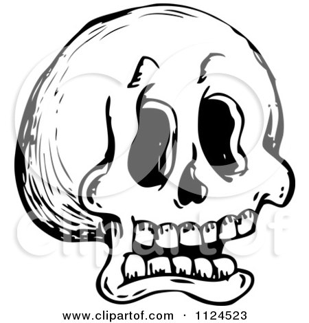 Clipart Of A Sketched Black And White Human Skull - Royalty Free Vector Illustration by visekart