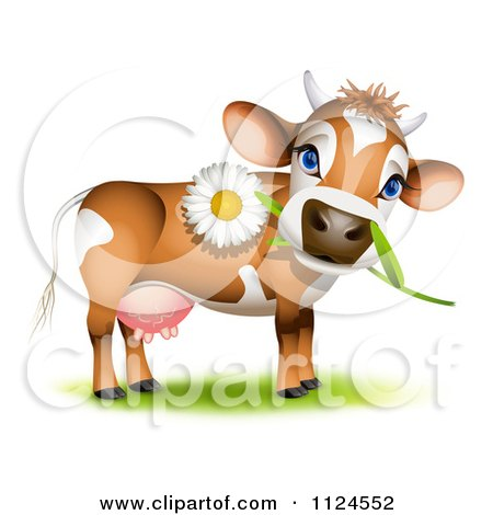 Clipart Of A Cute Jersey Cow With A Daisy In Its Mouth - Royalty Free Vector Illustration by Oligo