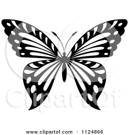 Clipart Of A Black And White Butterfly 24