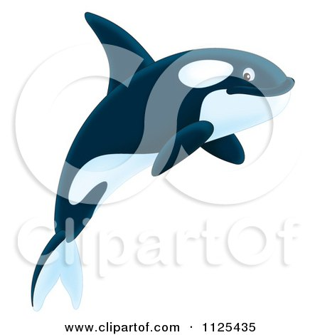 Cartoon Of A Happy Jumping Orca Killer Whale - Royalty Free Clipart by Alex Bannykh