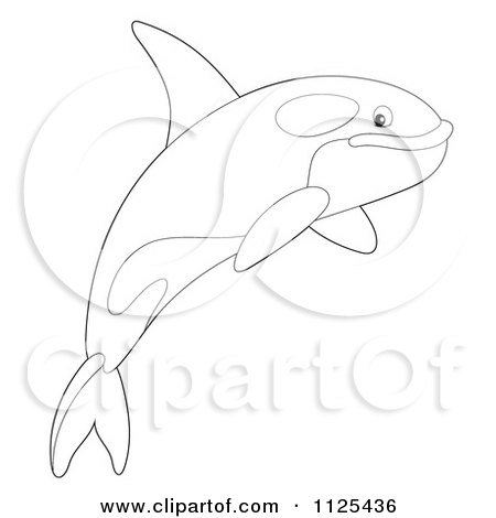Cartoon Of An Outlined Happy Jumping Orca Killer Whale - Royalty Free Clipart by Alex Bannykh