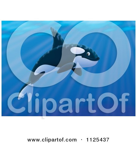 Cartoon Of A Happy Swimming Orca Killer Whale - Royalty Free Clipart by Alex Bannykh