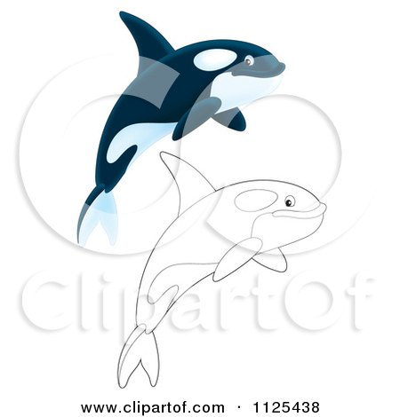 Clipart of Black and White Lineart Killer Whale Orcas Swimming ...