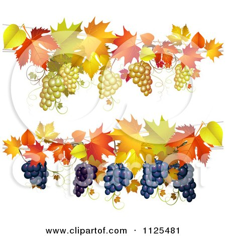 Clipart Of Borders Of Autumn Maple Leaves And Grapes - Royalty Free Vector Illustration by merlinul