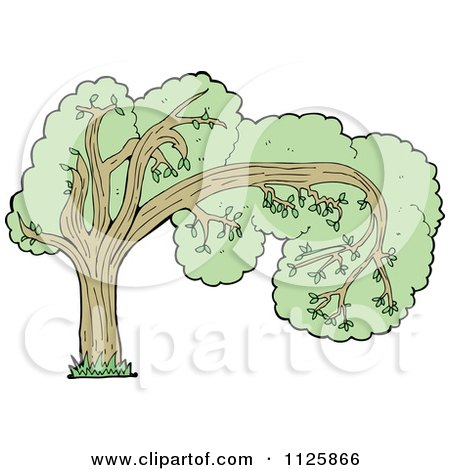 Cartoon Of A Tree With Green Foliage 23 - Royalty Free Vector Clipart by lineartestpilot