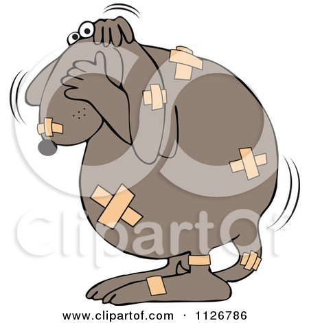 Cartoon Of A Battered Dog Covered In Bandages - Royalty Free Vector Clipart by djart