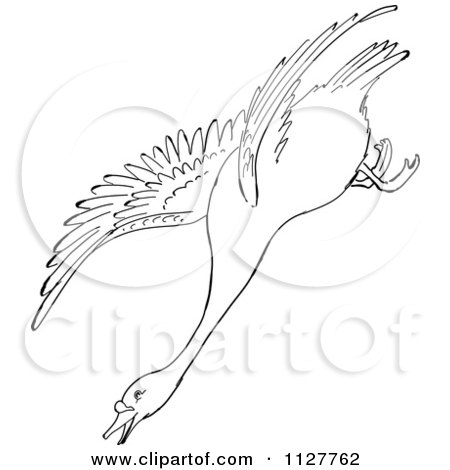 Cartoon Of A Retro Vintage Black And White Swan Descending In Flight Line Drawing - Royalty Free Vector Clipart by Picsburg