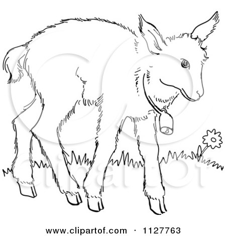 Cartoon Of A Retro Vintage Black And White Baby Goat With A Bell Line Drawing - Royalty Free Vector Clipart by Picsburg